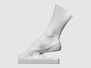 3D scan of Right Foot of the Dancer Fanny Elssler