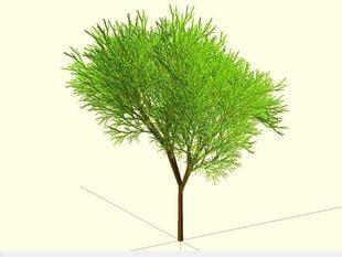 Completely Random Tree