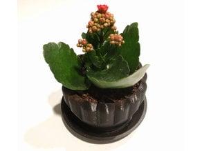 Stylized Flower Pot Desk Plant