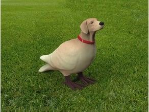 Dogbird 3