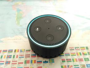 Echo Dot Battery Case