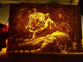 Tiger Lithophane