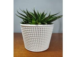 Knurled Succulent Pot