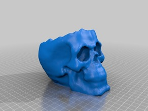 3d Scanned skull with hollow top.