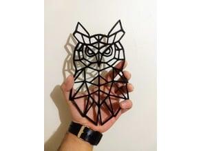 Owl 2D