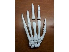 Manipulating, Modifying and Repairing an anatomical 3D file