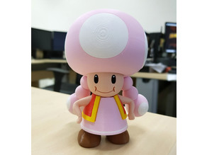 Toadette from Mario games - Multi-color