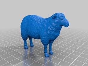 羊(Sheep)3Dデータ
