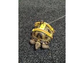 Tortoise harness