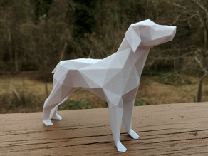 Low Poly Dog!