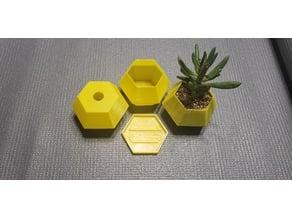 Vase mode hexagon planter with base