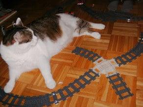 Crossing Train Curves