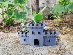 Succulent Plant Castle Pot