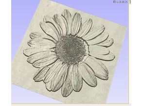 Daisy relief carving 3