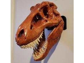T-Rex Skull Wall Mount - Sraight
