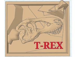 T-rex Excavation site