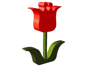 The tulip for decoration