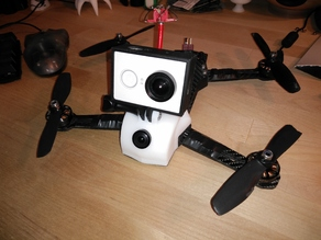 Lowrider ZMR with GoPro mount
