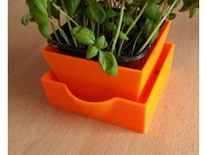 Flower pot with bottom watering