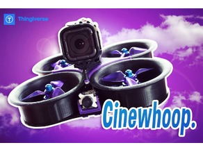 Cinewhoop Dison Remix