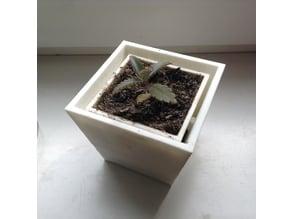 Plantpot (hangable)