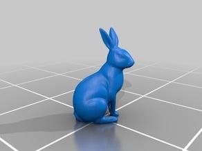 Easter rabbit scan