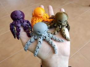 Cute Mini Octopus