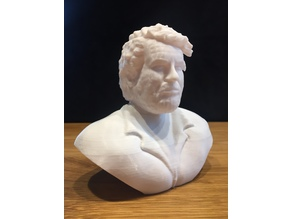 Bud Spencer Bust  - No Support Cut