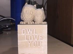Cuddling Owls - Owl Love You box