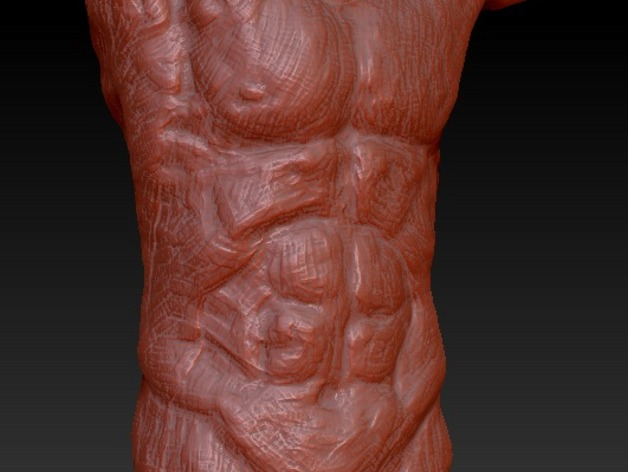 Male Anatomy Sculpt by fingerpuk - Thingiverse