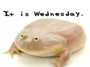 It is wednesday my dudes frog meme