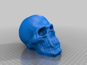 vampire skull bank JE