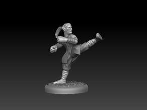 Elven Monk