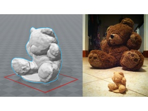 Teddy Scan