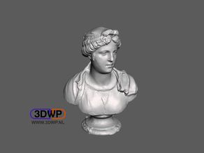 Bust Of A Young Woman - Simone Bianco (Statue 3D Scan)