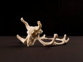 Storied Skulls Crown and Tiara