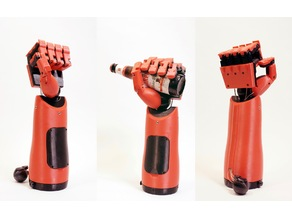 Phantom Pain Functional Prosthetic Hand
