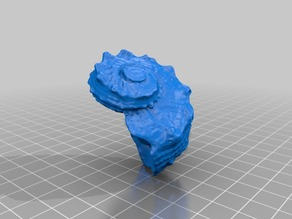 Sea Shell - 3D Scan