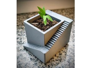 Seedling Flower Pot