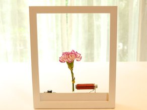 TimeFrame - A time portal to put on your desk.