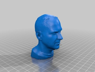 Cory Doctorow's decimated head for 3D printing - 16000 triangles