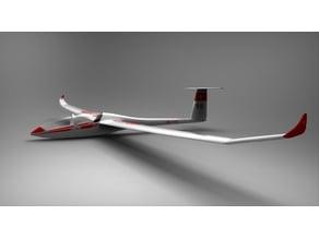 Glider DG-1000