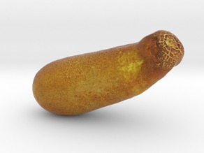The Yellow Cucumber