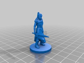 Female Monk / Ninja