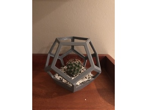 Dodecahedron vase plant
