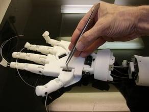 Inmoov Robot Rotation Wrist