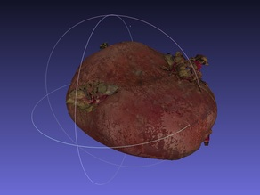 Potato Scan with NextEngine Scanner - Fruits and Vegetables