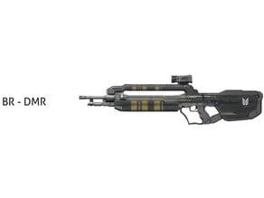 BR-DMR