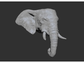 African Elephant Head - Low Poly