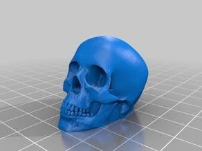 Valve cap skull / bouchon de valve tête de mort